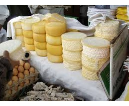 LOCAL PRODUCTION OF CHEESE